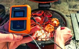 Best Wireless Smoker Meat Thermometer