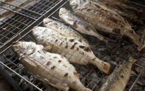 grill rockfish
