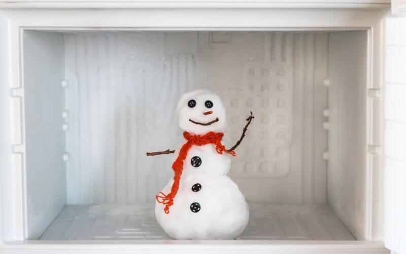 manual defrost refrigerator