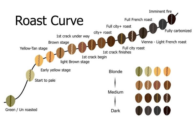 What is Blonde Coffee