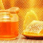 does honey freeze